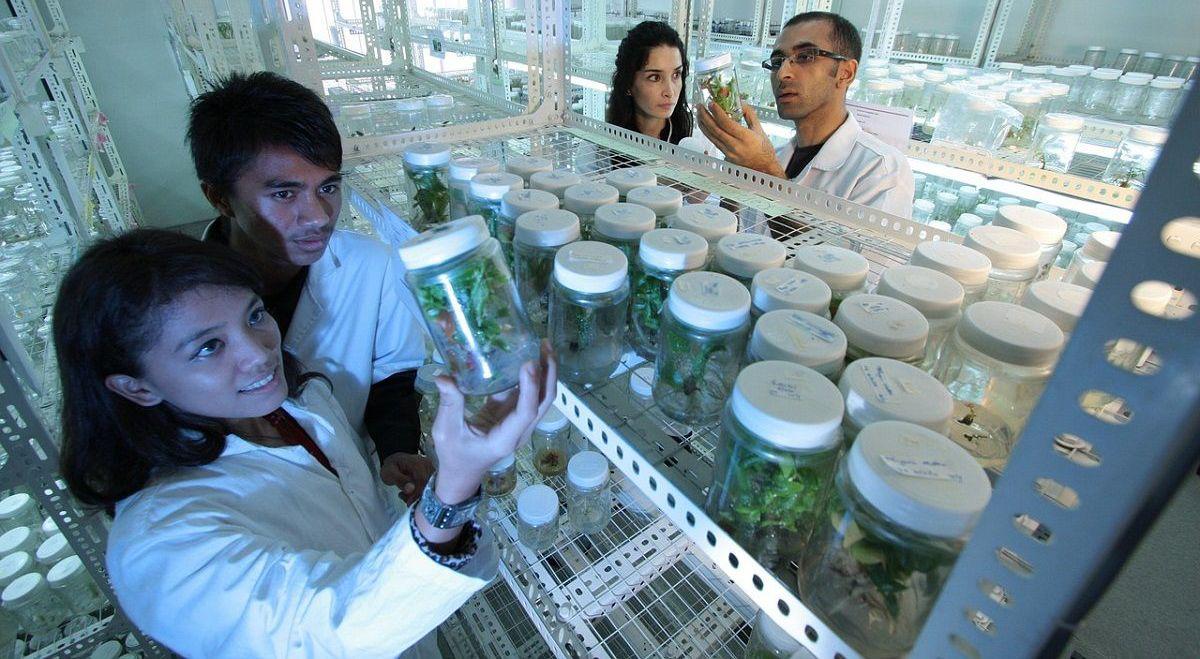 Vier Forscher stehen im Labor und schauen in Probengläser