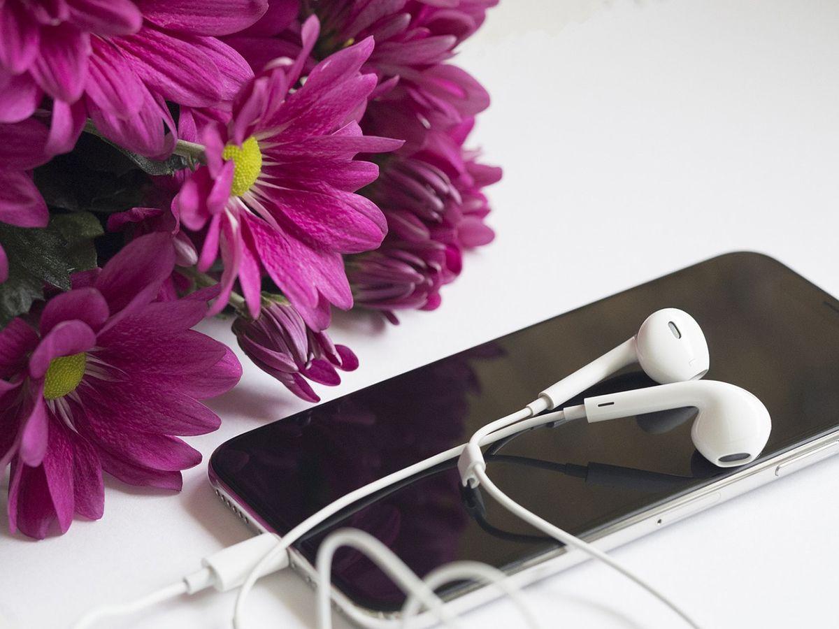 Smartphone, Kopfhörer und Blumen - für die Probandinnen eine ästhetische und stimmige Kombination, die an Musikhören und Entspannung erinnert. /Bildquelle: Pixabay