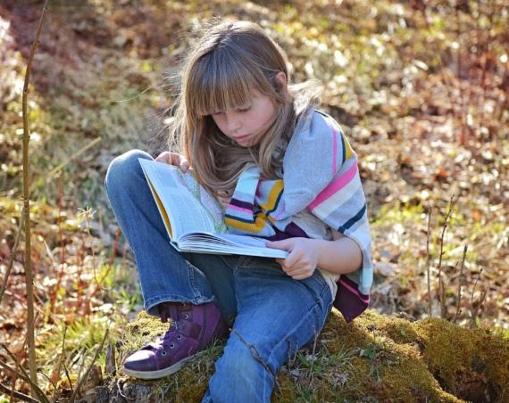 Ein lesendes Mädchen. /Quelle: pixabay.com / Pezibear